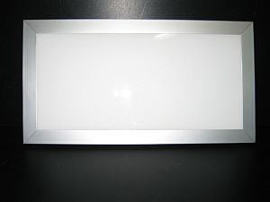 LED PANEL LIGHT * PRI-160-300