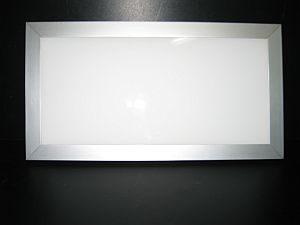 LED PANEL LIGHT * PRI-160-300