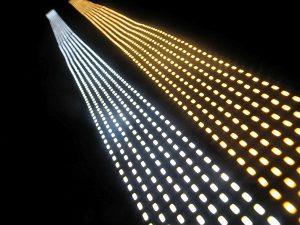 LED STRIP * PRI-PEARL-24V
